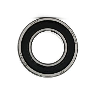 SKF NSK Timken Koyo NACHI NTN NSK Snr IKO Deep Groove Ball Bearing 6005 6005-Z 6005-2z 6005-RS 6005-2RS